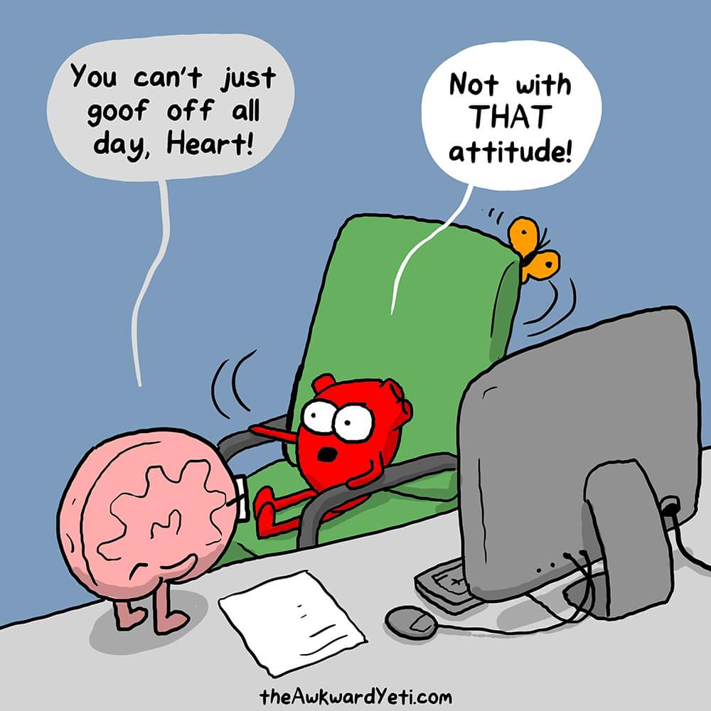 heart vs brain 1