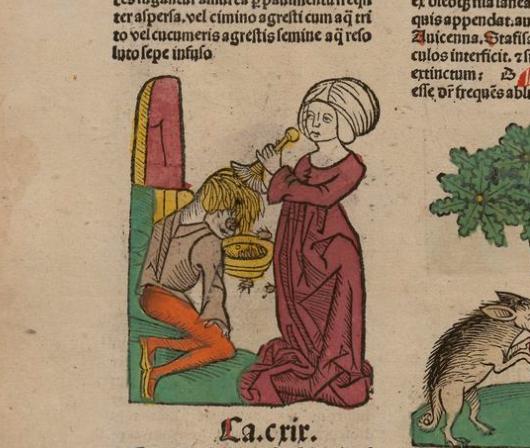 medieval doctors 6