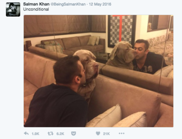 salman khan tweets 3