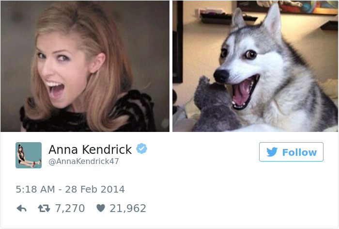 anna kendrick funny tweets