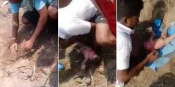 newborn baby girl buried alive