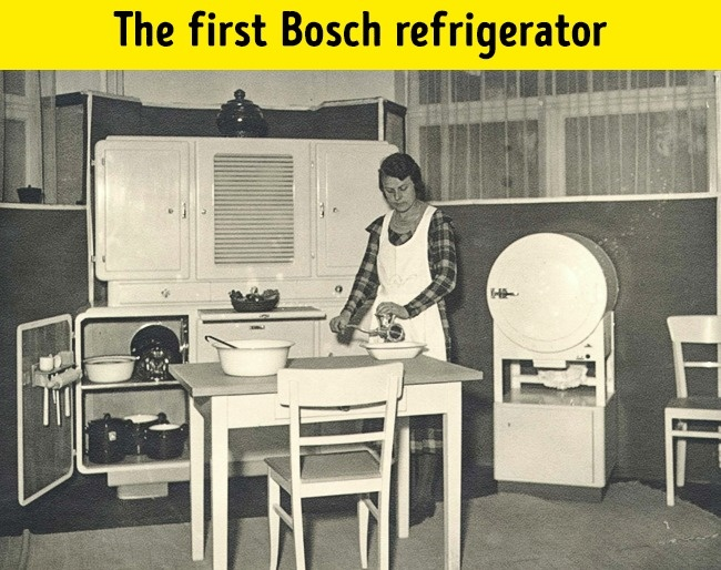 Firsh bosh refrigerator
