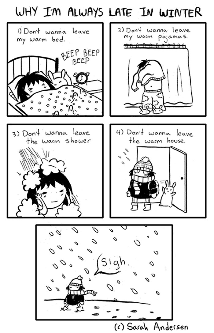 Funny Winter Problems